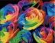 Розы. Картина со стразами